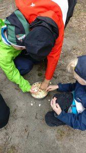 Reppu -leirit käynnistyivät Rismalahdessa – Lahden alueen partiolaiset c3f23de5c0